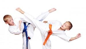 Karatebørn2 shutterstock_142392139